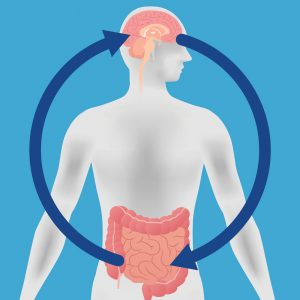 There is a direct connection between brain health and healthy gut